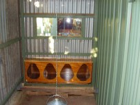 3becd7db6790636 Chicken Coops